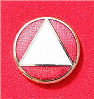 Pin AA White on Red